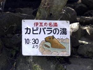 20050226izu-02