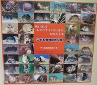 20080103saitama013