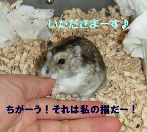 tasuke007.jpg