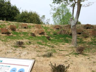 20110430saitama013