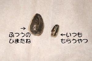 Himatane